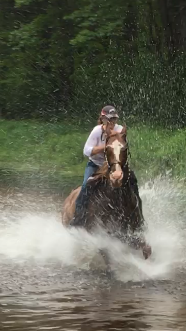 Philis and Pete gallop in the river 2